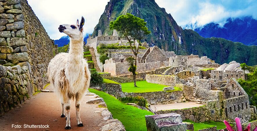 Machu Picchu sigue conquistando por su majestuosa tierra